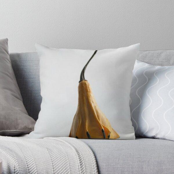 Farmers Market Gourds 2014 -1 Throw Pillow