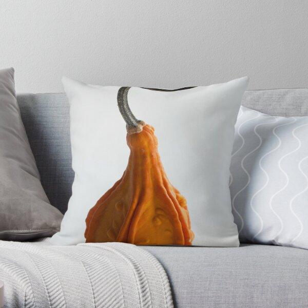 Farmers Market Gourds 2014 -3 Throw Pillow