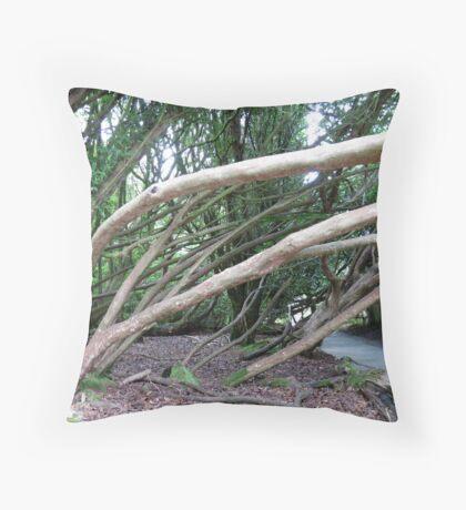 Crazy Trees - Lost Gardens of Heligan Kissen