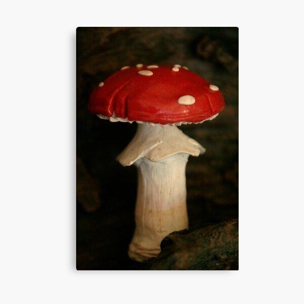 redcap Canvas Print