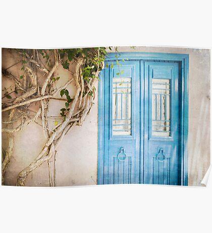 Blue Door with Vine Poster
