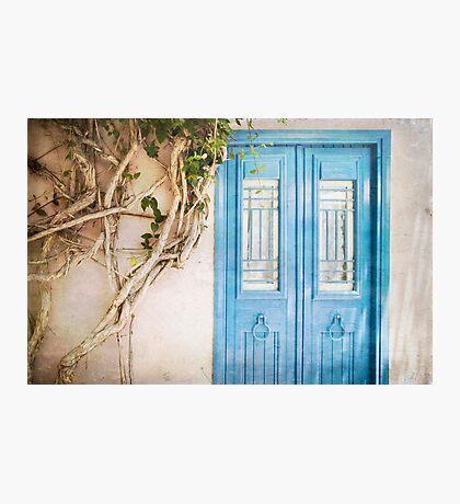 Blue Door with Vine Photographic Print