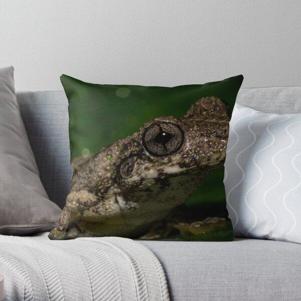 Emerald Tree Frog - Litoria peroni Throw Pillow