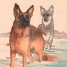 Doggy paddle by Jenny Proudfoot