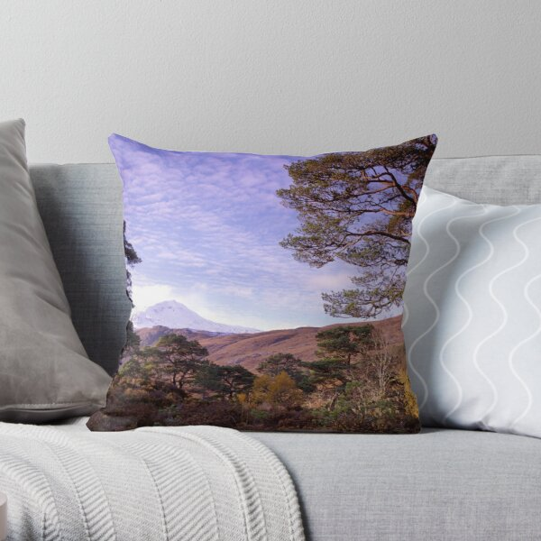 Caledonian Pines in Glen Affric, Scotland (cropped to suit cards) Throw Pillow