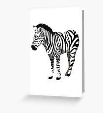 Zebra Grußkarte