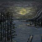 Night Lake by weirdpuckett