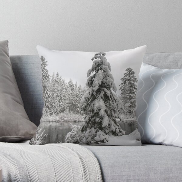 Winter in Algonquin  Throw Pillow