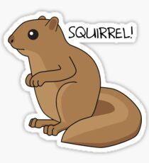 Squirrel Is Squirrel Sticker