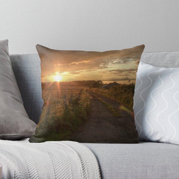 Long Wrangle Farm, Somerset Throw Pillow