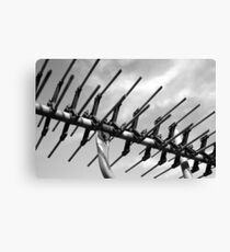 tv antenna Canvas Print