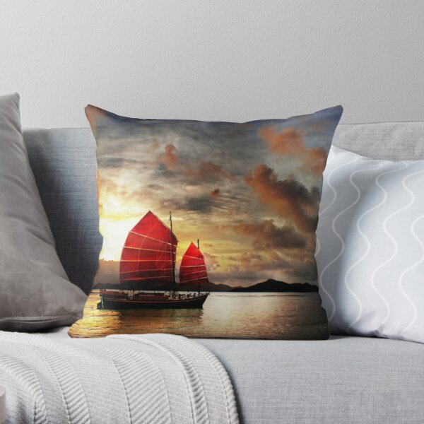 Kindle Pillows Cushions Redbubble