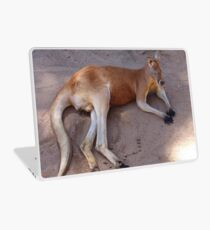 Red Kangaroo Laptop Skin