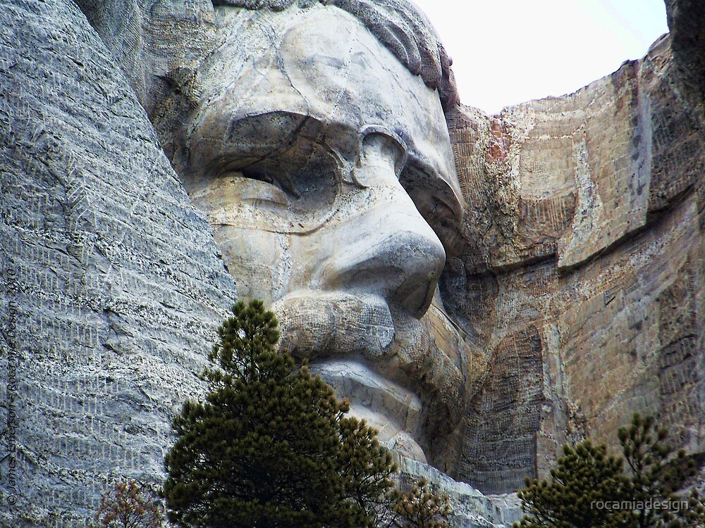 Roosevelt on Rushmore by rocamiadesign