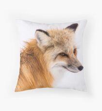 Fox Bodenkissen