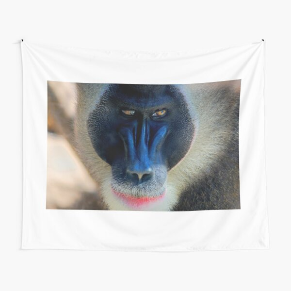 monkey looking right Tapestry