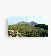 Mount Taranaki/Egmont Canvas Print