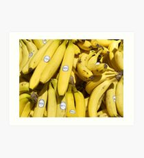 Food - bananas (Bonita #4011) Art Print