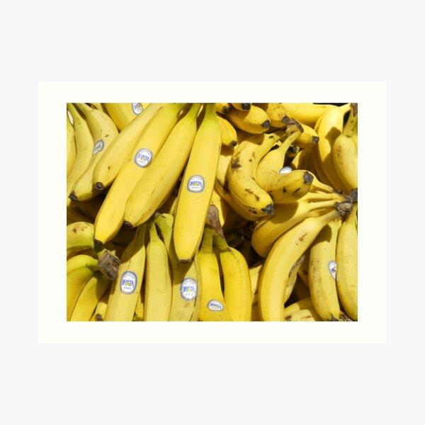 Food - bananas (Bonita #4011) Art Print