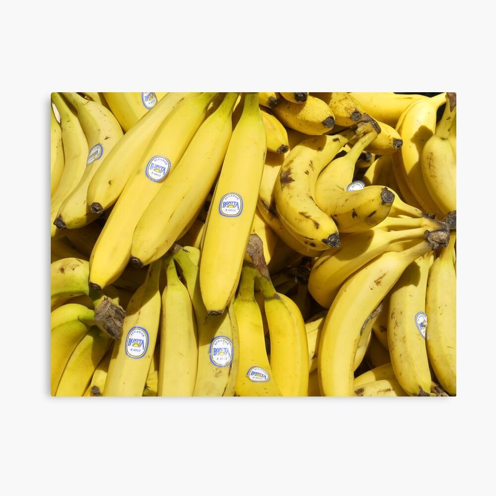 Food - bananas (Bonita #4011) Canvas Print