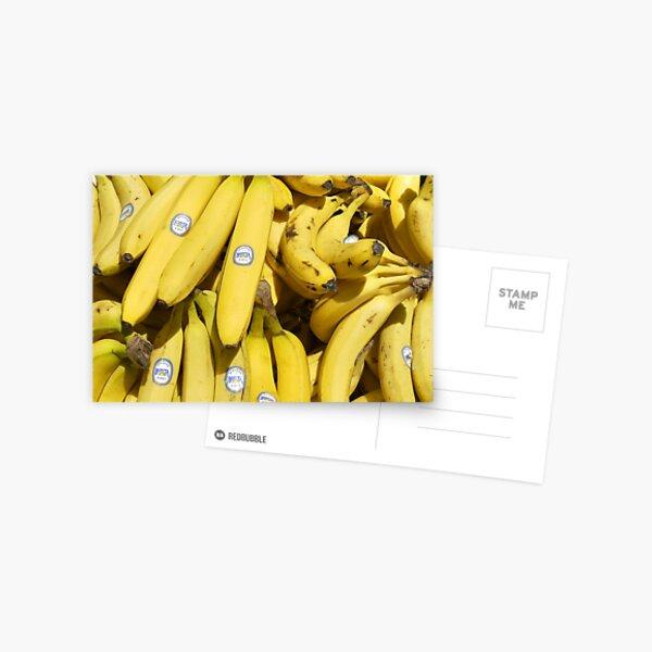 Food - bananas (Bonita #4011) Postcard