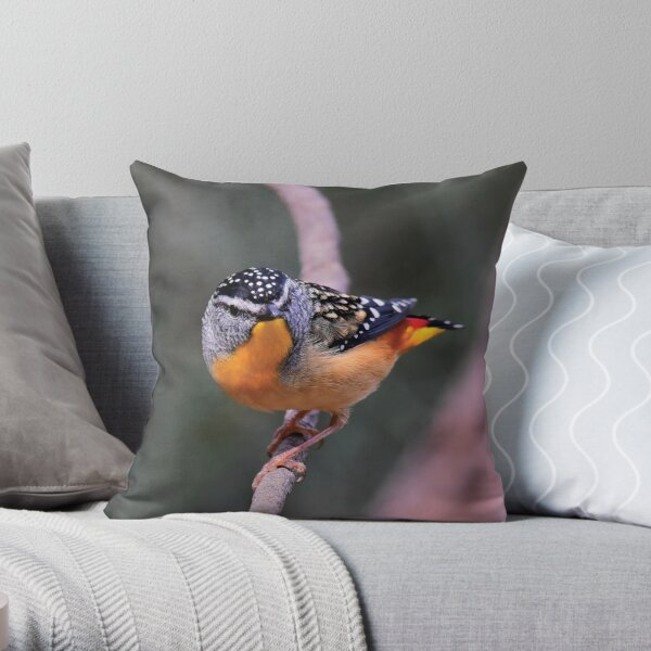 Spotted Pardalote Throw Pillow