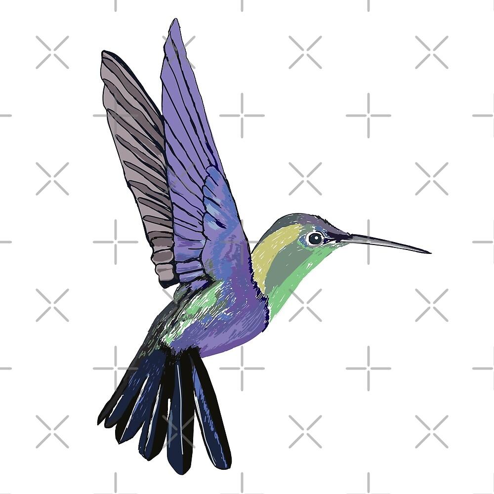 «Colibrí» de Manitarka