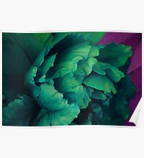 Green Peony Poster