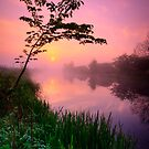 Forth and Clyde Canal at Twechar by David Mould