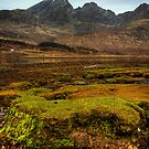Blaven and Loch Slapin by Karl Williams