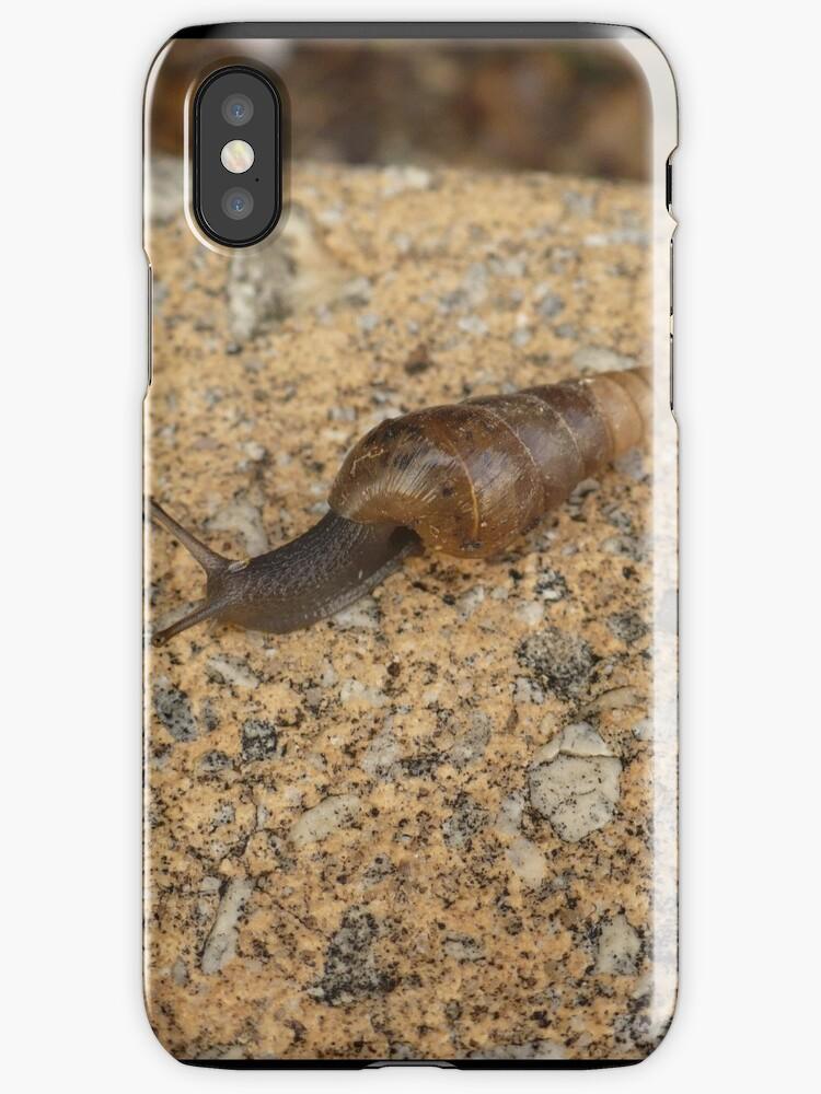Snail Express by elledeegee