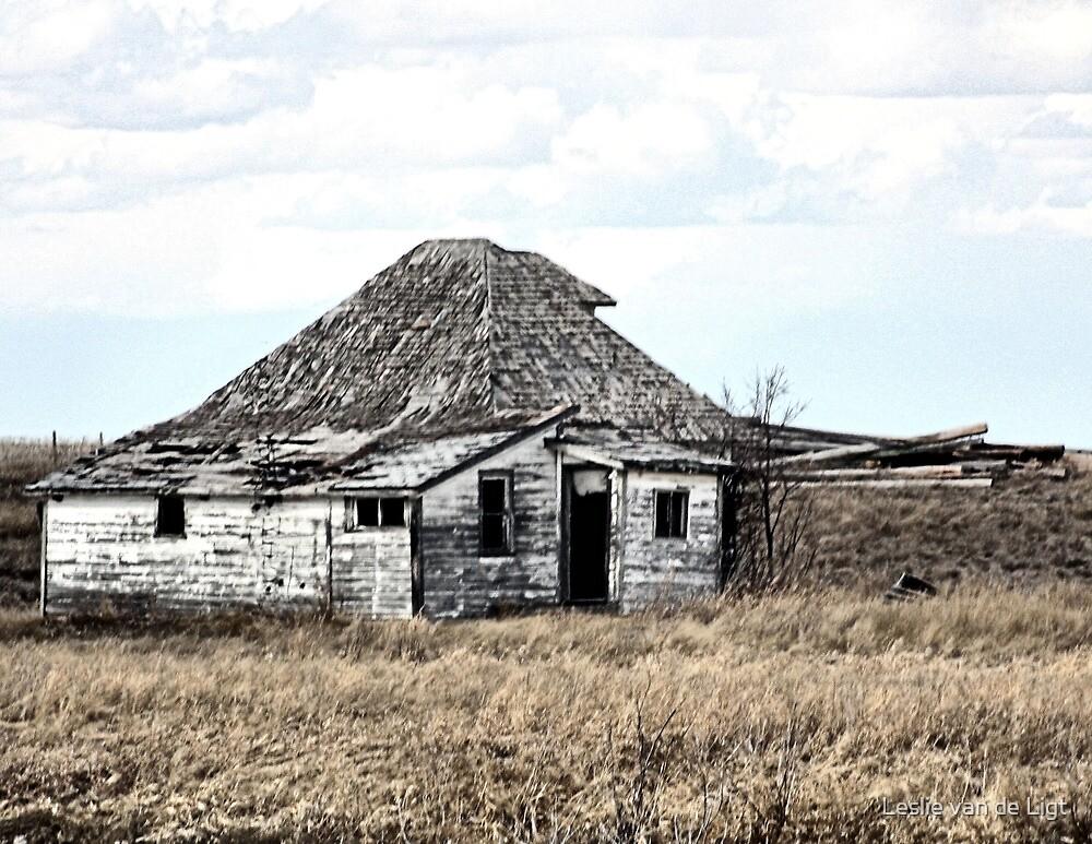 Their Old Prairie Home. by Leslie van de Ligt