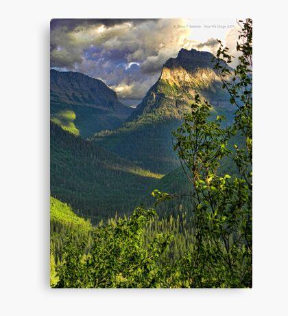 High Country - Glacier National Park Canvas Print