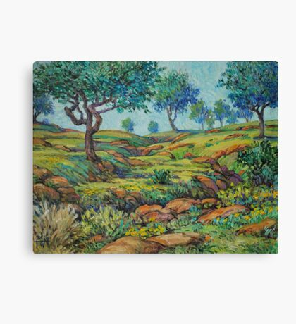 Good Pasture Poor Land for Farming Canvas Print