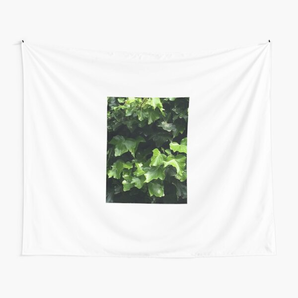 Ivy Tapestry