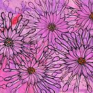 African Daisy, Cape Daisies, Pink Flowers, Floral Art by clipsocallipso