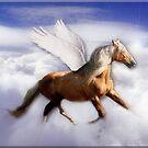 Pegasus by Kym Howard