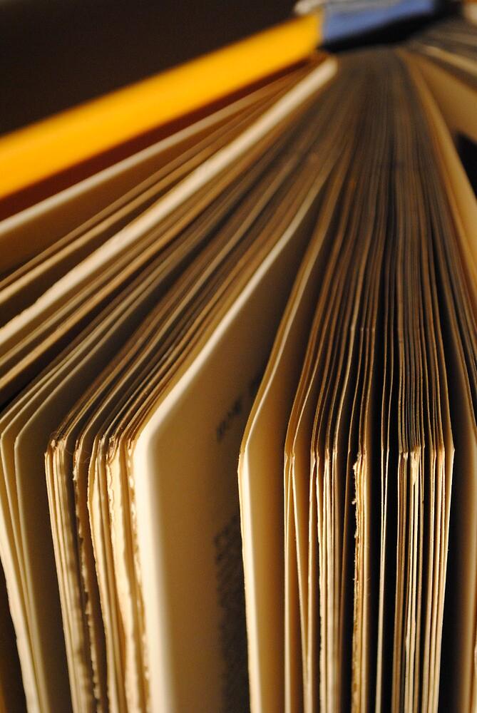 Books 4 by abbeydawber
