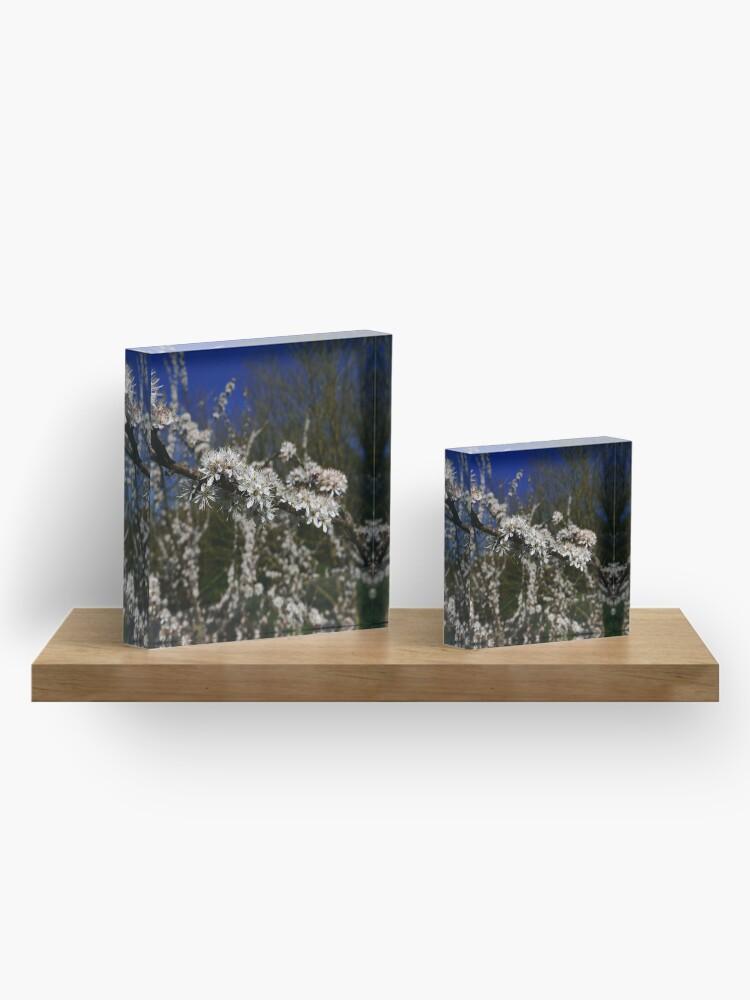 Alternate view of Blackthorn (Prunus spinosa) Acrylic Block
