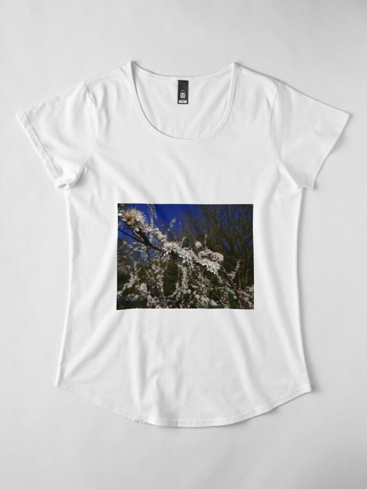 Alternate view of Blackthorn (Prunus spinosa) Premium Scoop T-Shirt