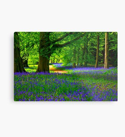 Bluebell Wood - Thorpe Perrow #3 Metal Print