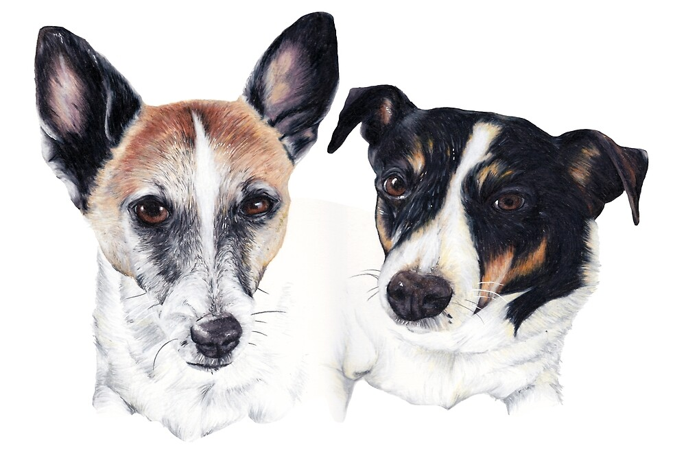 Jack Russells by Apatche Revealed