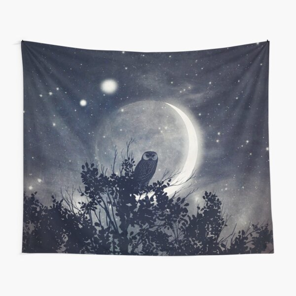 A Night with Venus and Jupiter Tapestry