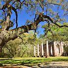 Ruinen der Kirche in Sheldon, South Carolina, USA. von Billlee