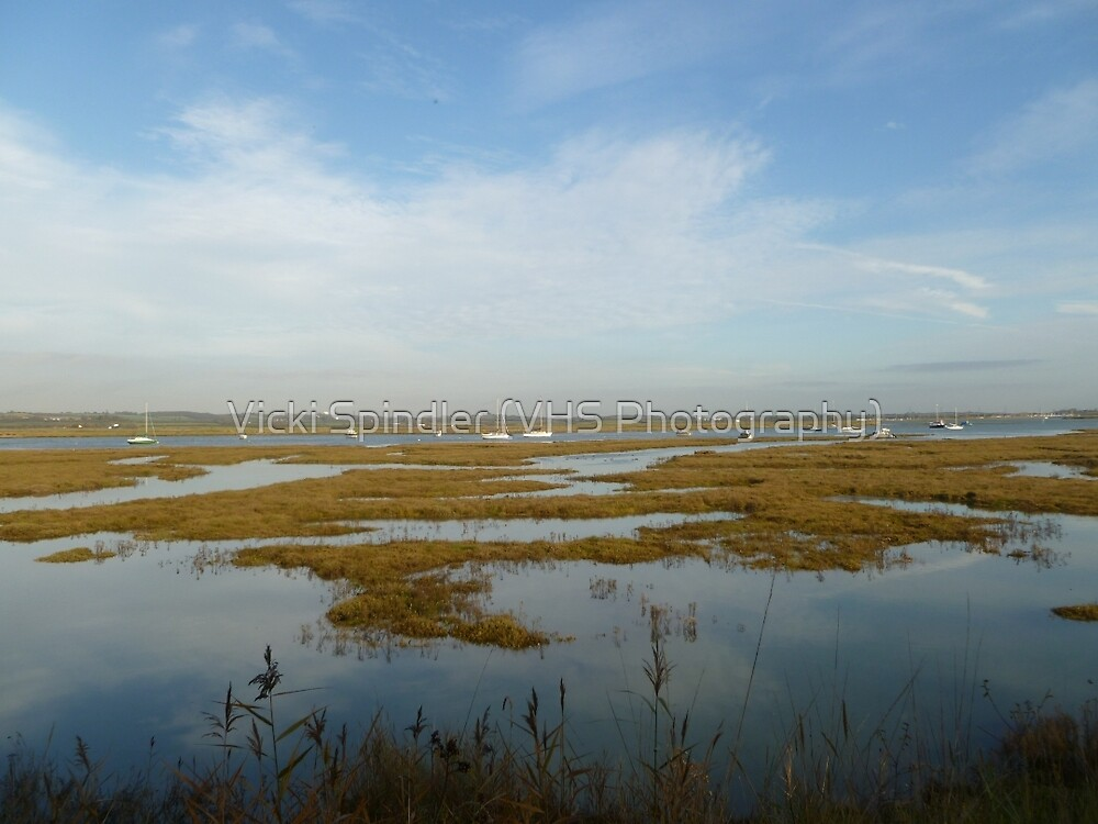 Marshes by Vicki Spindler (VHS Photography)