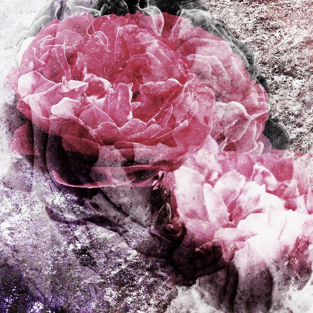 enchanted stone by enchantednature