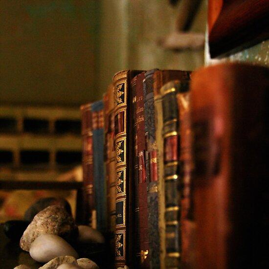 Old bookshelf by Bluesrose