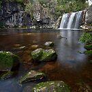 Pencil Pine Falls - Tasmania by Michael Treloar