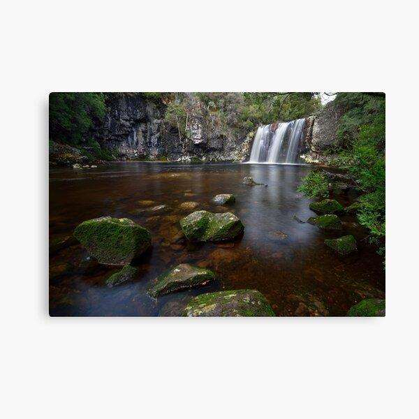 Pencil Pine Falls - Tasmania Canvas Print