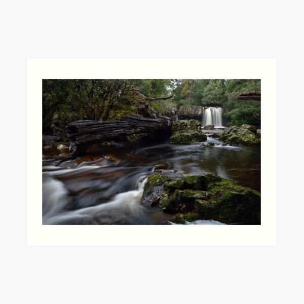 Knyvet Falls - Tasmania Art Print